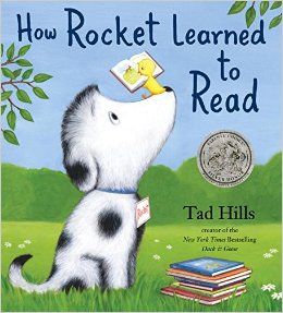 how-rocket-learned-to-read
