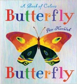 butterfly-butterfly