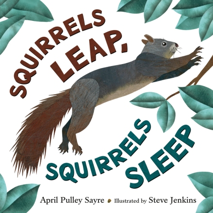 squirrels leap squirrels sleep.jpg